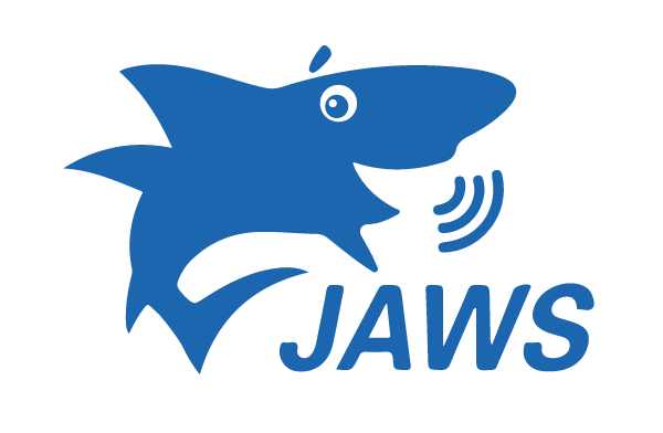 JAWS assisting screen reader technology